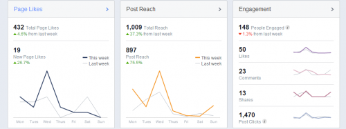 Picture 3-facebook insights